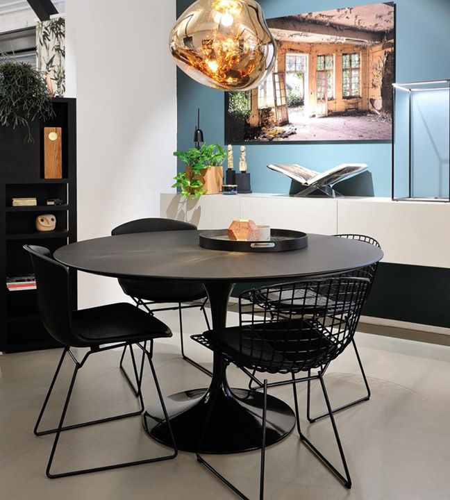Bertoia side chair with seatpad